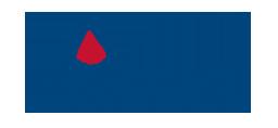 Morani srl - Escavazioni, Micropali e consolidamenti fabbricati, pali trivellati, pozzi drenanti, ingegneria naturalistica, rafforzamento corticale, tiranti, Reggio Emilia